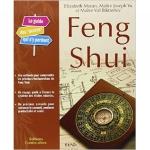 Feng Shui : Le guide des accros qui s'y perdent